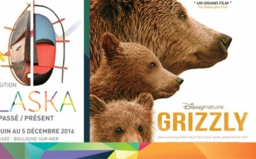 Cycle Cinéma - Grizzly - The Walt Disney